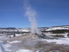 Big Cub Geyser - Yellowstone - USA