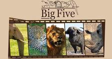 Big Five Tours & Safaris
