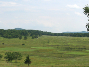 Big Meadows
