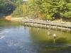 Fishing On Big Sable River
