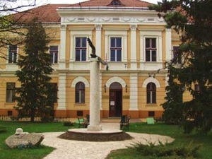Bihar Museo