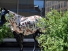 Billings Horse Sculpture MT
