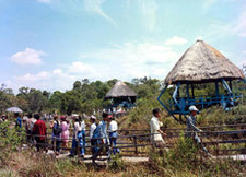 Binh Chau Thermal Springs