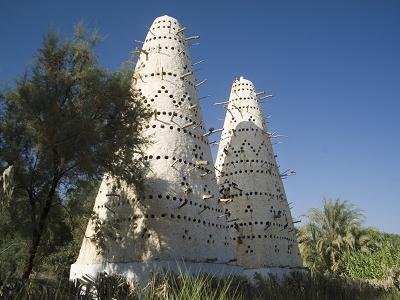 Bird Towers In Siwa Oasis Of Egypt