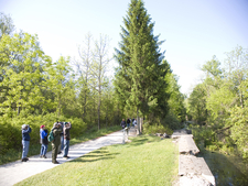 Birdwatchers On The Towpath Trail