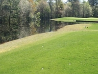 Negro Creek Golf Club