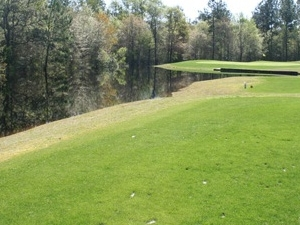 Negro Creek Golf Club
