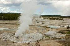 Black Growler - Yellowstone - USA