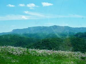 Negro Montaña