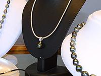Black Pearl (Seychelles) Ltd