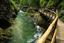 Bled - Vintgar Gorge