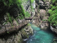 Bled Vintgar Gorge