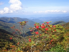 Blue Ridge From Craggy Gardens - Asheville NC