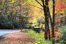 Blue Ridge Parkway To Brevard NC