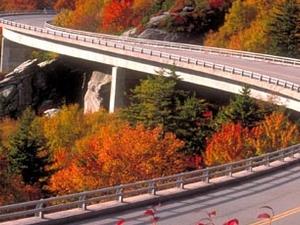 Fall Leaf Change Photos