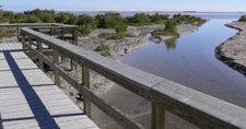 Boardwalk At The End Of Snake Bight Trail