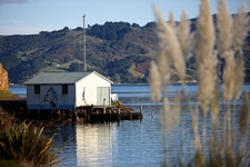 Boat Shed @ Otago Harbour - South Island NZ