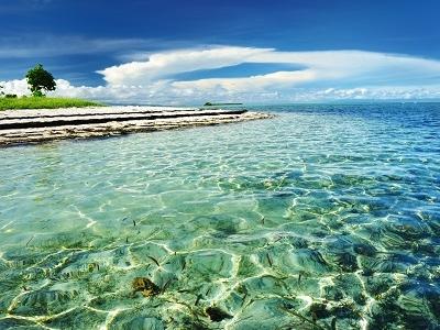 Bohol Island - Visayas