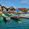 Bojo Village - Sulawesi