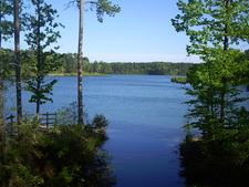 Bonita Lakes 1