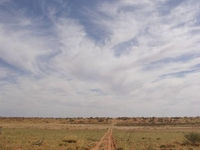 Strzelecki Desert