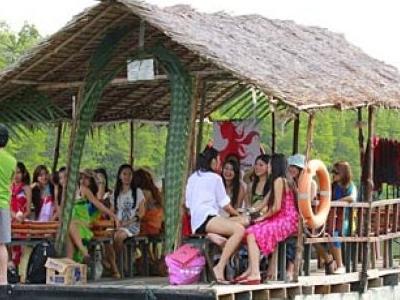 Borneo Kellybays