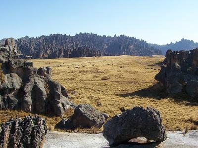 Bosque De Piedas Huayllay-Pasco