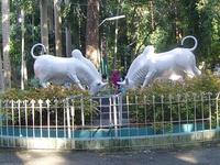 Botanical Garden-Puducherry