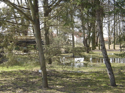 Botanical Garden-Szeged