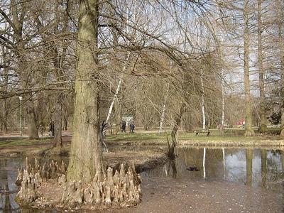 Botanic Garden , Szeged