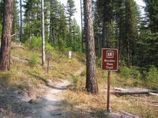 Boulder Pass Trailhead - Glacier - Montana - United States