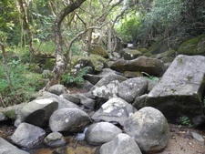 Boulders Along Amah Rock Trail