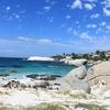 Boulders SA Penguin Beach