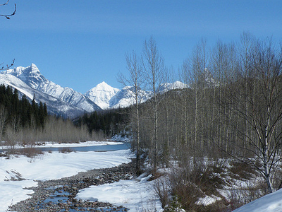 Boundary Trail  West At Glacier - Montana - United States