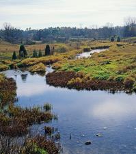 Sucursal Río