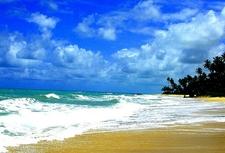Brazil - Beach View
