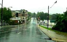 Brevard NC - After A Tropical Storm