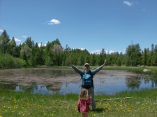 Bridger-Teton National Forest - Pond
