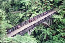 Bridge To Nowhere Walk - Whanganui National Park - New Zealand