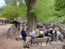 Bright Angel Point Trail - Grand Canyon - Arizona - USA