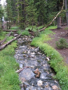 Bristlecone Pine Trail View