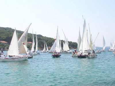 Latin Regatta