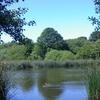 Brownshore Lakes