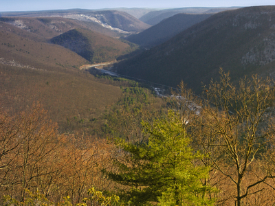 Pine Creek Gorge In Brown Township
