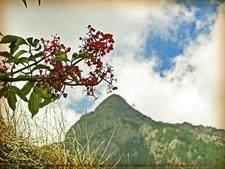 Bucegi - Carpathian Mountains