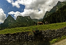 Bucegi Park Area Views In Carpathians