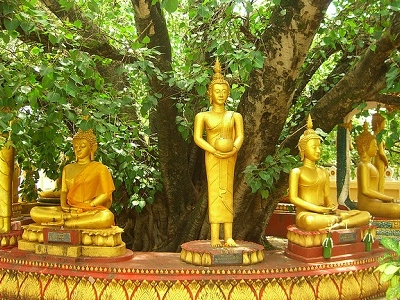 Buddha Statues Sitting In A Circle