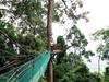 Bukit Gemok