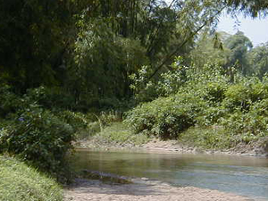 Burhi Gandak Río