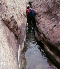 Caminata Burro Wash